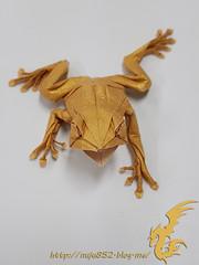 Tree Frog (Rydos) Tags: paper origami art hanji koreanpaper korean paperfold fold folding paperfolding designed design model gold white papermodel korea origamilst kamiyasatoshi kamiya satoshi tree frog treefrog amphibian
