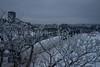 DSC_0889 (Copy) (pandjt) Tags: ottawa ontario winterphotography snow urbanphotography streetphotography alexandrabridge ottawariver bridge nepeanpoint