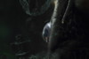 My Favorite Novel (Fiction) (murraymike89410) Tags: dinuba california gleaningsforthehungry 100mmlmacro hmm macromondays myfavoritenovelfiction doubleexposure