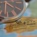Landkarte der Zeit (luna3884) Tags: macromondays myfavouritenovelfiction