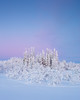 Drevfjället III (Gustaf_E) Tags: berg birch björk dalarna drevfjället fjäll forest gran kväll landscape landskap naturreservat skog snow snö spruce sverige sweden vinter winter woods