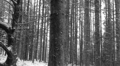 ceredigion (christopherjohn.adams) Tags: ceredigion wales