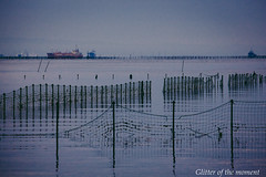 2017 01 02 - 070211 0 Canon EOS 5D Mark III (ONLINED1782A) Tags: sea ship landscape photo photography vsco vscofilm