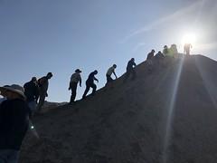 2018-02-15 GOPS Geology Hike (106) (MadeIn1953) Tags: 2018 201802 20180215 greatoutdoorsgo go gops greatoutdoorspalmspringsgops hiking california coachellavalley riversidecounty meccahills paintedcanyon laddercanyon geologywalk