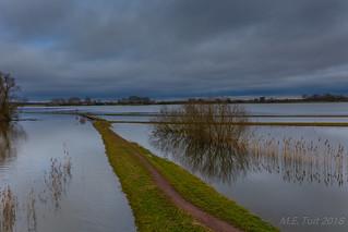 Floodlands @ Gelderland