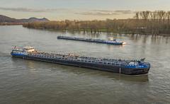 Rheinschiffer 6 (benimar66) Tags: rhein schiffe wasser