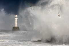 Up In The Air (briandoyle1) Tags: aberdeen breakwater waves pier storm beastfromtheeast seagull darksky lighthouse seascape