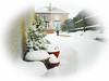 Snowmageddon (Nicolas Valentin) Tags: glasgow scotland home snow weather cold arctic