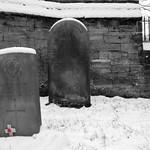 Remembrance Poppy, Flaybrick