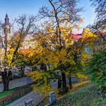 Autumn in the City thumbnail