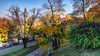 Autumn in the City (kud4ipad) Tags: 2017 poland przemysl hdr gold autumn tree leaf foliage fall yellow red green sky building church