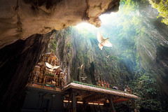 Batu Cave temple (anekphoto) Tags: malaysia batu kuala caves hindu lumpur temple asia cave travel religion god statue tourism worship hinduism background gold culture ancient asian rock deity nature tourist bird fly murugan lord stone mountain famous religious indian sculpture holy stairs shrine cavern limestone holiday architecture landmark place vacation spiritual hope cliff sacred