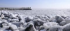 Frozen IJsselmeer (B℮n) Tags: vlietermonument afsluitdijk breezanddijk winter ijs ice frozen sea ijsselmeer waddenzee aanmeerplaats beijsd bevroren brugdijk hekhekwerk kou koud koude loopvlonder meer meerpaal meerpalen monument ochtend ochtendkou paal palen stilvlonder vriest vriezen zonsopgang cold morning holland netherlands pier noord layer icing icicles 2march2018 2maart2018 artic glacial 50faves topf50 100faves topf100