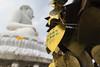 Thai Liebesschlösser (snej1972) Tags: urlaub holiday vacation vacanze thailad siam asien suedostasien qualitytime singleholiday buddhismus budhism phuket thailand