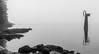 Foggy Beach (Scrambler27) Tags: scrambler27 beach belcarra fog foggy water horizon rocks trees inlet blackandwhite bnw sculpture bc
