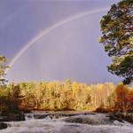 Double Rainbow, Glen Affric thumbnail