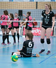41171583 (roel.ubels) Tags: flynth fast nering bogel vc weert sint anthonis volleybal volleyball indoor sport topsport eredivisie 2018 activia hal