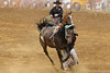 343A7193 (Lxander Photography) Tags: midnorthernrodeo maungatapere rodeo horse bull calf steer action sport arena fall dust barrel racing cowboy cowgirl