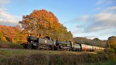 GWR Double Header (andrewfarmer1) Tags: d610 severnvalleyrailway severnvalley railway train trains steamengine steamrailway autumn steam steamlocomotive