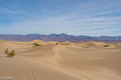 Mesquite Flat Dunes, Death Valley NP @ 2018.1.29 (viwes) Tags: deathvalley mesquiteflatdunes