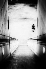 3236 (Elke Kulhawy) Tags: street strase kunst art bonn monochrome blackandwhite bnw bw black white lensbaby elkekulhawy schwarzweiss schwarz grain people treppe stadt urban