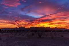 Foothills Sunrise (http://fineartamerica.com/profiles/robert-bales.ht) Tags: arizona facebook fineart flickr foothills haybales land people photo photouploads places states sunsetorsunrise sunrise sunset redsky twilight yellow clouds landscape spectacular desertphotography panoramic surreal sublime sonora inspirational path morning silhouette scenic sunrisephotography red sonoradesert robertbales desertecosystem desert nature sky yuma gilamountains dusk dawn scene sunlight colorful view tranquil vibrant outdoor black beauty