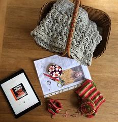 (S1lverst1tcher) Tags: handknitted winwickmum melonsocks biscotteyarns handmade knitting knitted allthebestthings
