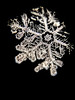 (Lisa Gordon Photography) Tags: iphoneography iphone 7 olloclip lisa gordon photography lisagordonphotographycom snowflake winter macro