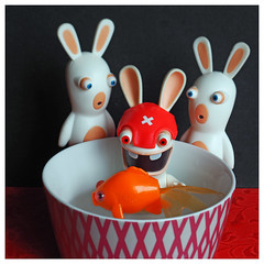 Les Pieds Dans le Plat, (LUDOVIC. R) Tags: 30mm 35 pentacon lapins crétins raving rabbids micro 43