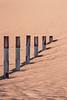 Wahiba sands (Enricu) Tags: textures wahibasands dunes sand desert oman unstoppable nature endless