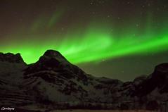 Carollayna-2756 (Carollayna) Tags: aurora northernlights norway tromso nikond90 arcticcircle arctic nightphotography auroraborealis