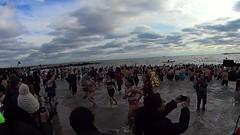 polar bear new year's coney island 1 (branko_) Tags: polar bear video new year coney island brooklyn winter branko films beach