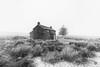 Nun's Cross Farm - Dartmoor (pm69photography.uk) Tags: niksilverfx nunscross nunscrossfarm devon dartmoor southwest rugged moody moor moors cottage farmhouse blizzard sony spooky sonya7rii snow ilce7rm2 a7rii 1635mmf28 sony1635mmf28