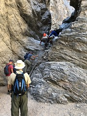 2018-02-15 GOPS Geology Hike (122) (MadeIn1953) Tags: 2018 201802 20180215 greatoutdoorsgo go gops greatoutdoorspalmspringsgops hiking california coachellavalley riversidecounty meccahills paintedcanyon laddercanyon slotcanyon ladder