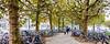 Trees and bicycles (Jan 1147) Tags: treesandbicycles bomen en fietsen trees bicycles bikes outdoor buitenopname gent belgium