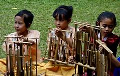 """INDONESIEN, Java, Bandung, Beim Angklung-Spiel (Bambusinstrument), 17177/9675 (roba66) Tags: reisen travel explorevoyages urlaub visit roba66 asien südostasien asia eartasia """"southeastasia"""" indonesien indonesia """"republikindonesien"""" """"republicofindonesia"""" indonesiearchipelago inselstaat java angklung musik musikinstrument bambus musical instrument harmony hamonie brauchtum tradition child children kids kinder girls mädchen cute"""