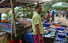 Fish Stall, Kochi P1250652 (Phil @ Delfryn Design) Tags: india2018 kochi