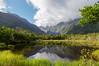 IMGP4346-2 (Alexandre.Meunier73) Tags: newzealand southisland australspring 2015 westcoast