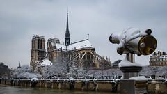canon à neige (booHguy) Tags: monuments notredame paysages seine neige église