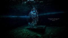 JK184384 (Jeannot Kuenzel) Tags: jeannot kuenzel wwwjk4unet jk4u malta scuba under water underwater diving photography macro supermacro olympus em1mk2 em1mkii zen port leica dg macroelmarit 45mm f28 asph ois inon z240 240z ucl165 s2000 moods aliensofthesea aliensofthedeepblue alien deep blue mediterranean sea best pictures super world creature extreme pyrosome