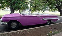 Purple Impala (Poocher7) Tags: road trees purplecar purpleimpala chevyimpala convertible whiteinterior classiccars havana cuba carribean sidewalk beautifulcars car oldcars lightpurple mauve