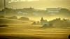 Through the mist. (Raquel Borrrero) Tags: arbol hierba árbol neblina niebla mist fog haze cielo sky casas houses landscape paisaje bruma nikon campo andalucía