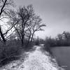 Sur les bords du lac (Jacques Isner) Tags: islesdudrac étangnoiret isère pentax pentaxart pentaxflickraward pentaxk1 nature samyang14mm samyang jacquesisner