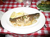 Brook Trout Fish on a Plate 2018 NYC 5792 (Brechtbug) Tags: brook trout fish plate the oyster bar restaurant grand central station nyc 01092018 new york city 2018 seafood dinner below ground level january winter time cooked boneless pan fried aquatic creature almond slivers dining out table top
