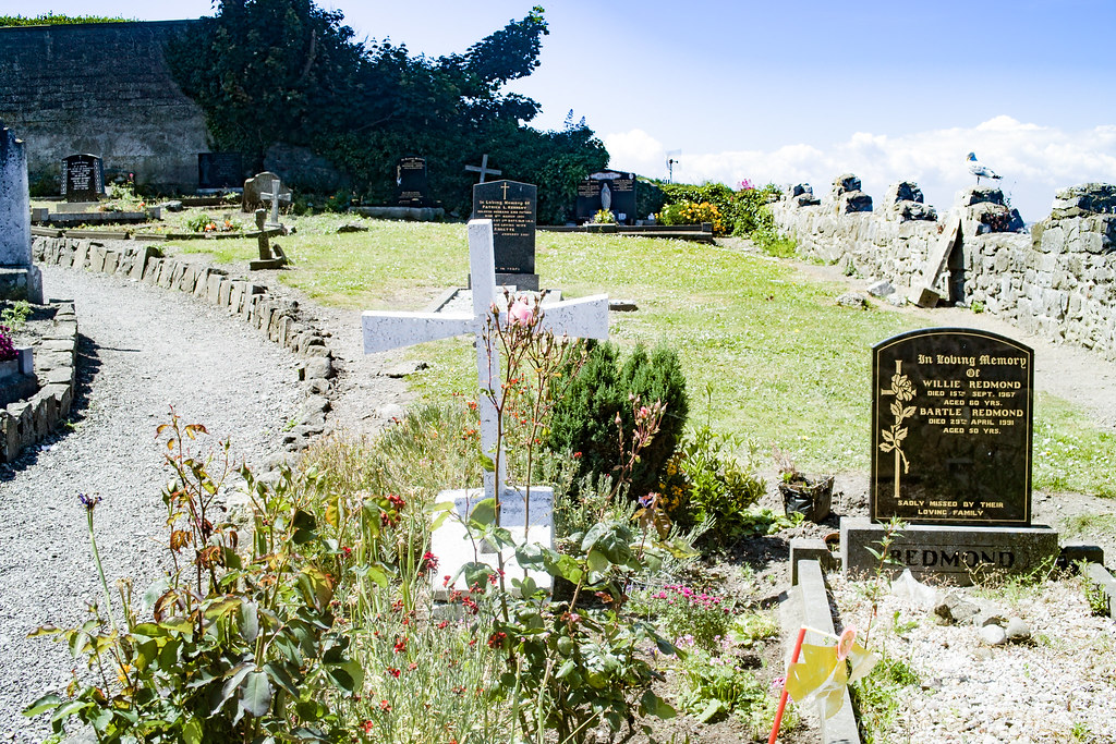 BACK IN JANUARY 2009 I VISITED THE OLD GRAVEYARD IN HOWTH [I HAD TO LEAVE BECAUSE I WAS ATTACKED BY GULLS]-135887
