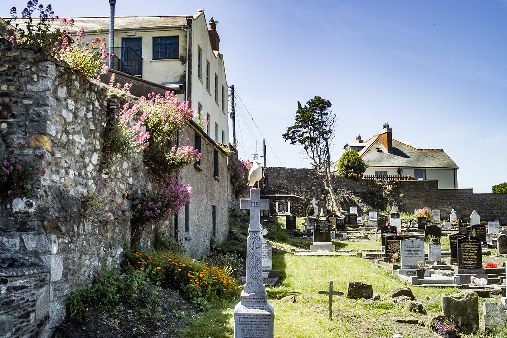 BACK IN JANUARY 2009 I VISITED THE OLD GRAVEYARD IN HOWTH [I HAD TO LEAVE BECAUSE I WAS ATTACKED BY GULLS]-135896