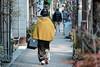 Bundled up in a shawl (Rekishi no Tabi) Tags: tokyo asakusa japan geisha kimono winter fujifilm xpro2