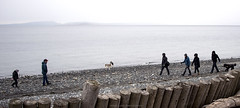 family walk at spit (tesseract33) Tags: tesseract33 nikon light world art travel outdoors pacificnorthwest peterlang squamishphotographers nikond750 d750 peterlangphotographynet beach beaches comox comoxbeaches