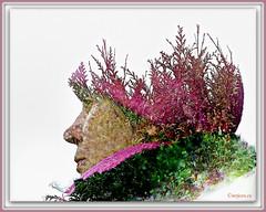 2-JVA_2263_DxO (mrjean.eu) Tags: surimpression double exposition doubleexposition portrait numérique nikon d3x 85mm14