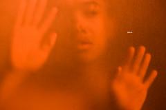 M-orange2 (Wood Oliver) Tags: digital canon 50mm18 eos5dii stm orange hand eye indoor lighting